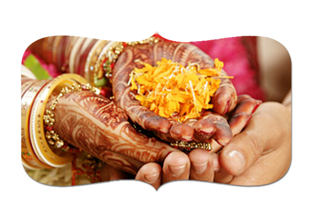 www hindumarriage com | Find your Life Partner  Leading Indian